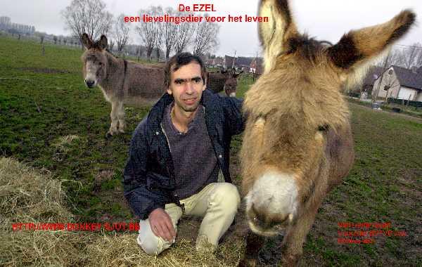 Beschrijving: Beschrijving: http://www.donkey-sjot.be/Pers-FotoGeert-brochure-klein.jpg